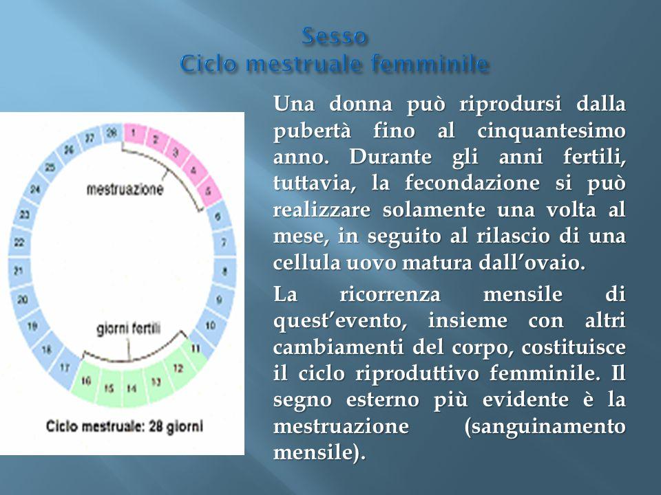 Sesso Ciclo mestruale femminile