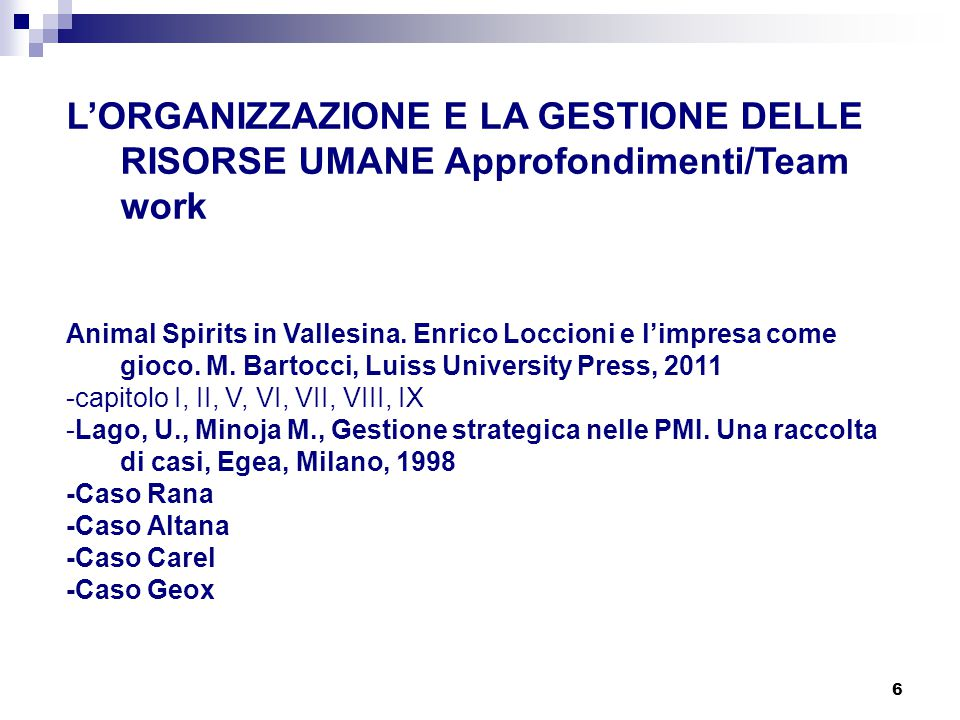 L'ORGANIZZAZIONE E LA GESTIONE DELLE RISORSE UMANE Approfondimenti/Team work