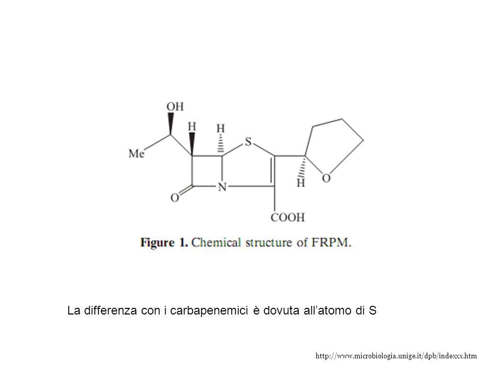 La differenza con i carbapenemici è dovuta all'atomo di S