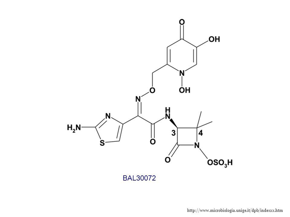 BAL30072