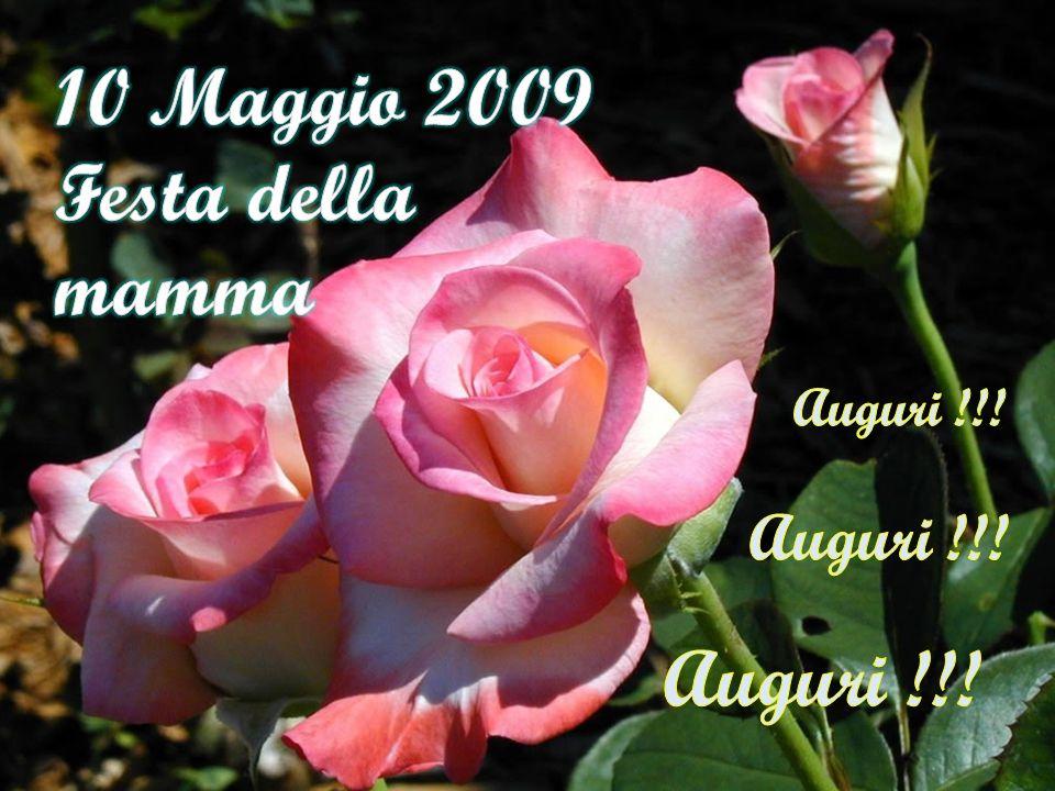 10 Maggio 2009 Festa della mamma Auguri !!! Auguri !!! Auguri !!!