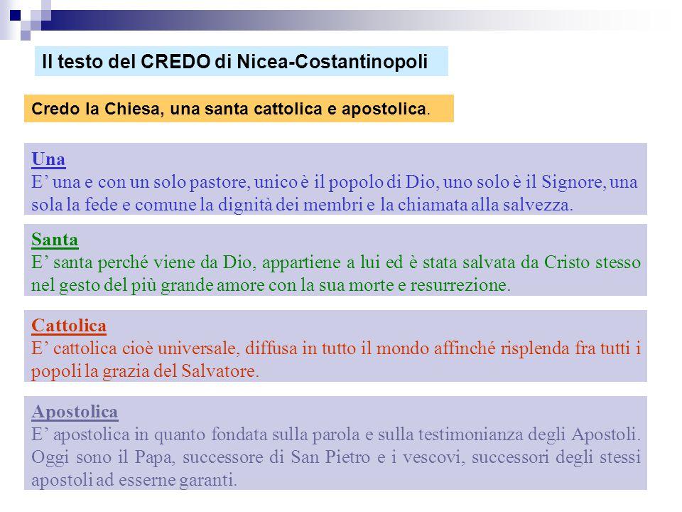 Il testo del CREDO di Nicea-Costantinopoli
