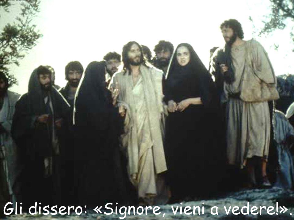Gli dissero: «Signore, vieni a vedere!».