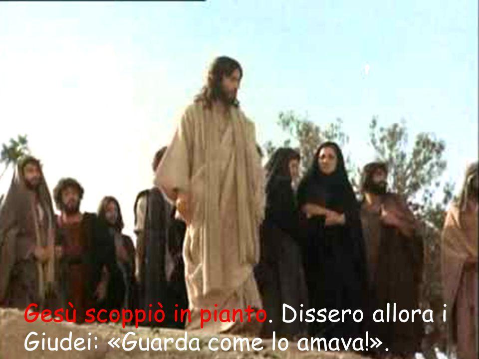 Gesù scoppiò in pianto. Dissero allora i Giudei: «Guarda come lo amava