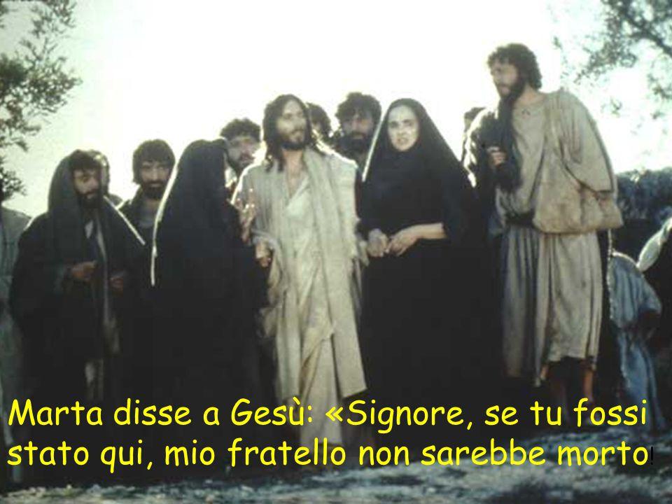 Marta disse a Gesù: «Signore, se tu fossi stato qui, mio fratello non sarebbe morto!
