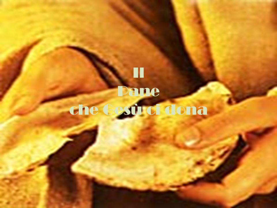 Il Pane che Gesù ci dona