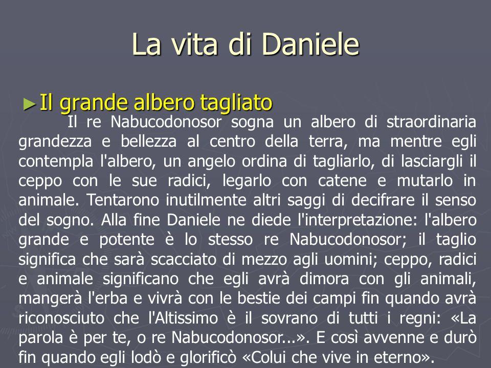 La vita di Daniele Il grande albero tagliato
