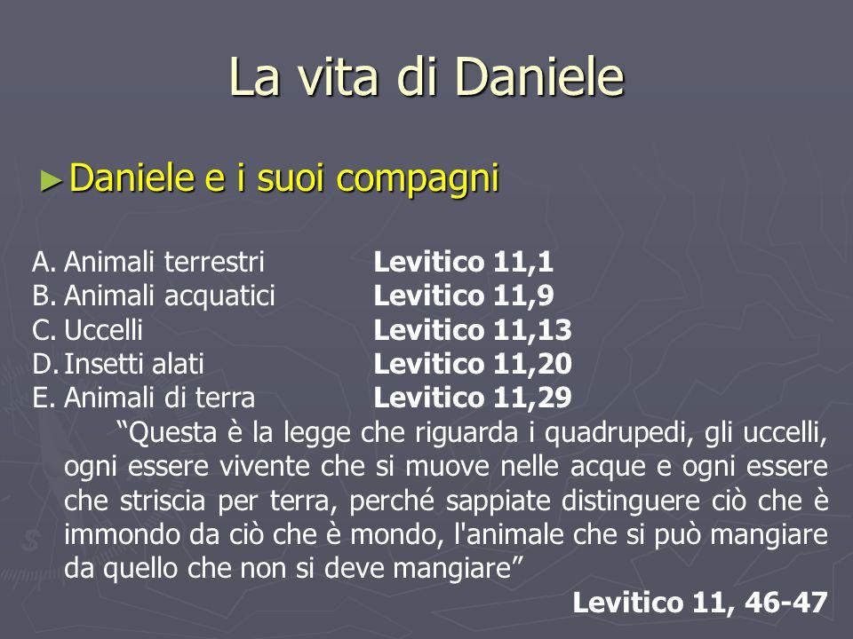 La vita di Daniele Daniele e i suoi compagni