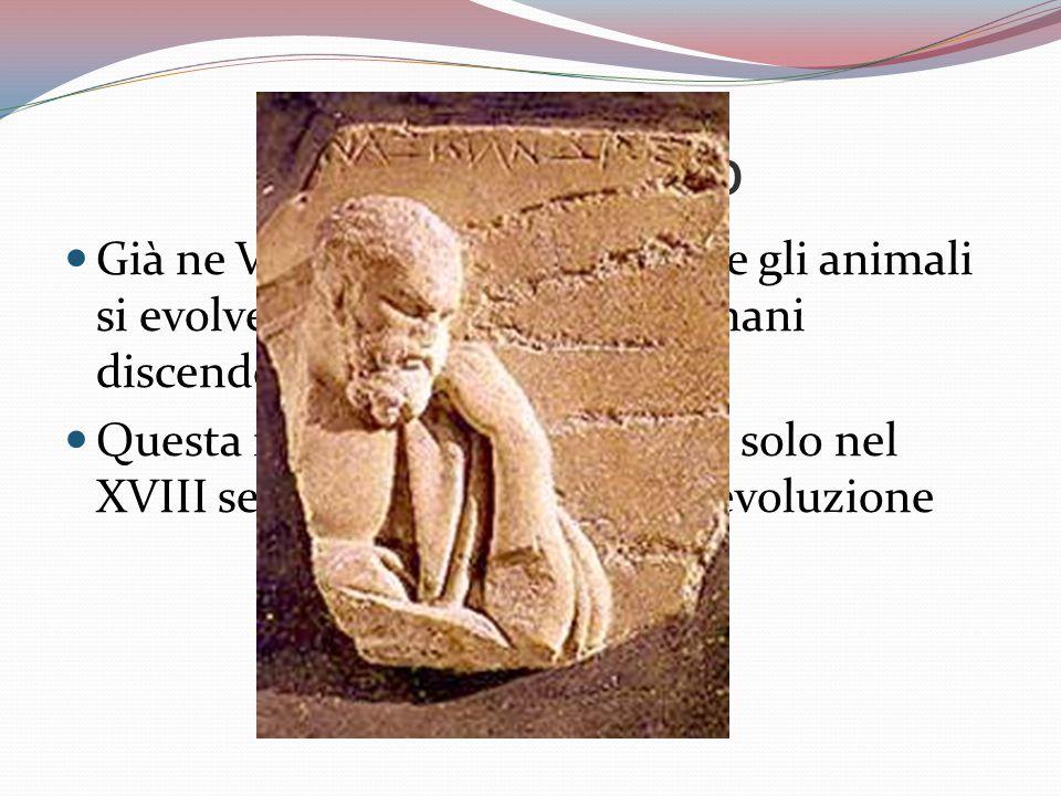 Anassimandro Già ne VI sec. A.c. sosteneva che gli animali si evolvevano e che gli esseri umani discendevano dai pesci.