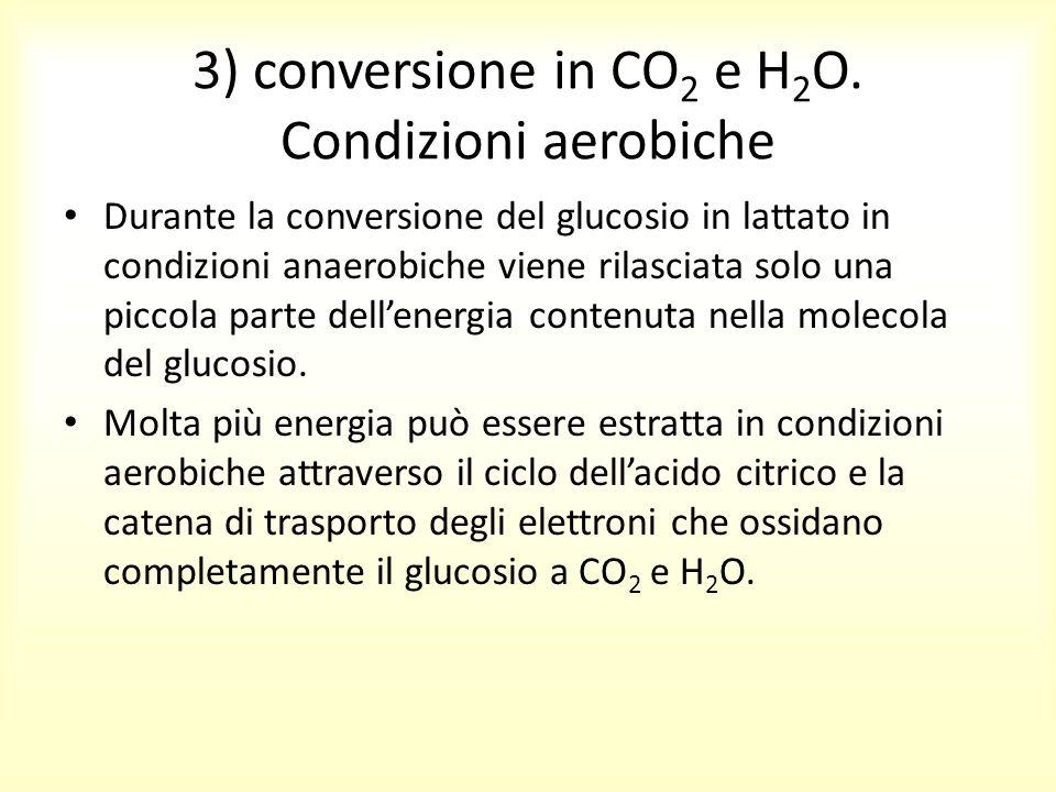 3) conversione in CO2 e H2O. Condizioni aerobiche
