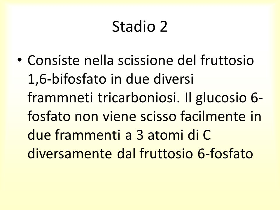 Stadio 2