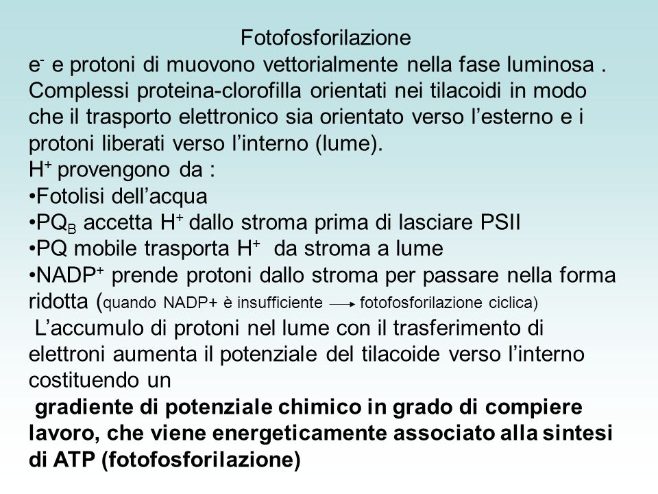 Fotofosforilazione