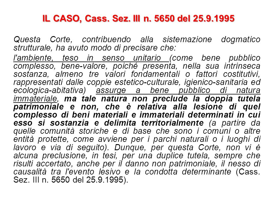 IL CASO, Cass. Sez. III n. 5650 del 25.9.1995