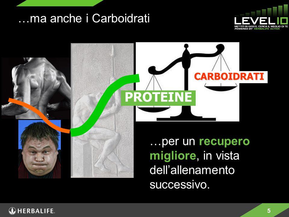 PROTEINE …ma anche i Carboidrati