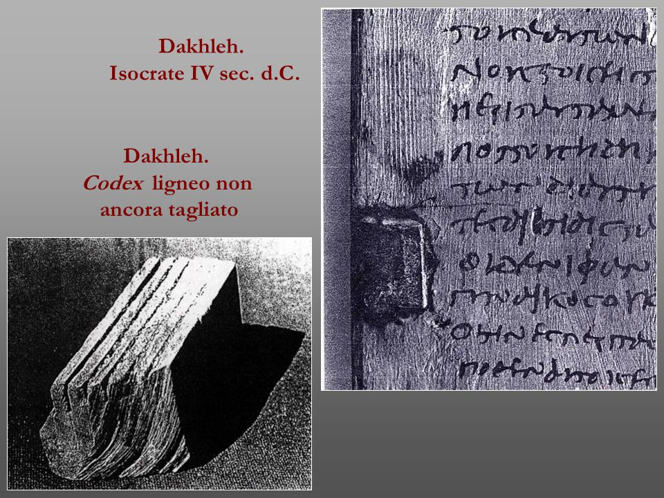 Dakhleh. Isocrate IV sec. d.C. Dakhleh. Codex ligneo non ancora tagliato