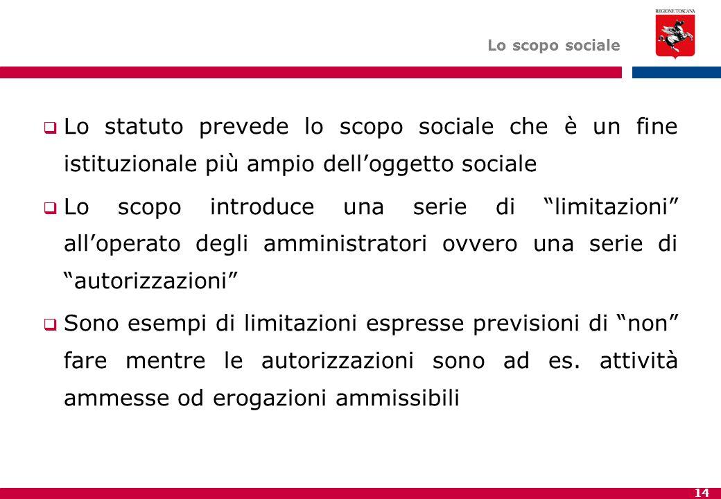 Lo scopo sociale Lo statuto prevede lo scopo sociale che è un fine istituzionale più ampio dell'oggetto sociale.
