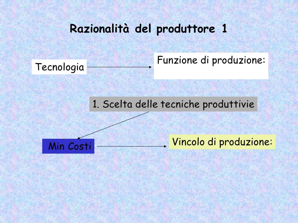 Razionalità del produttore 1
