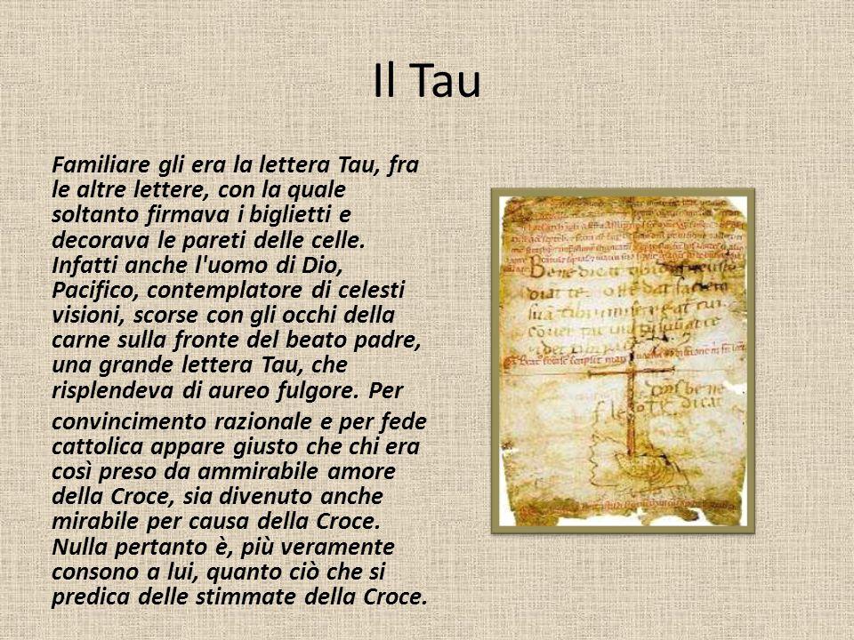 Il Tau