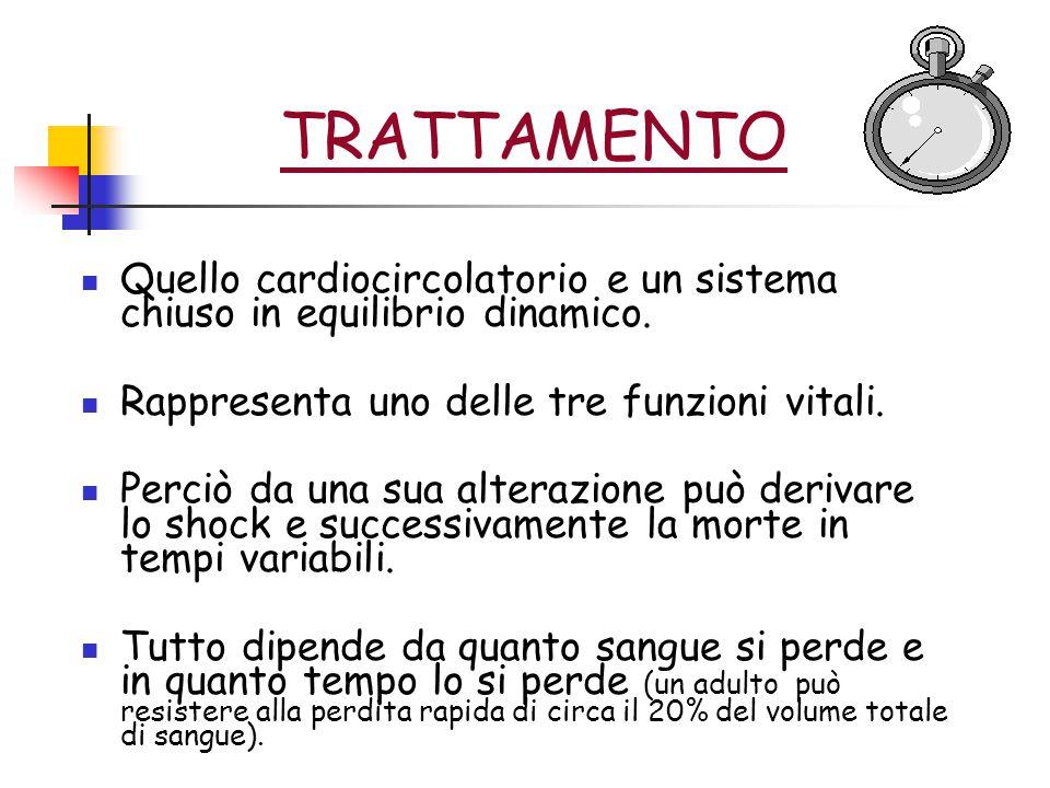 TRATTAMENTO Quello cardiocircolatorio e un sistema chiuso in equilibrio dinamico. Rappresenta uno delle tre funzioni vitali.