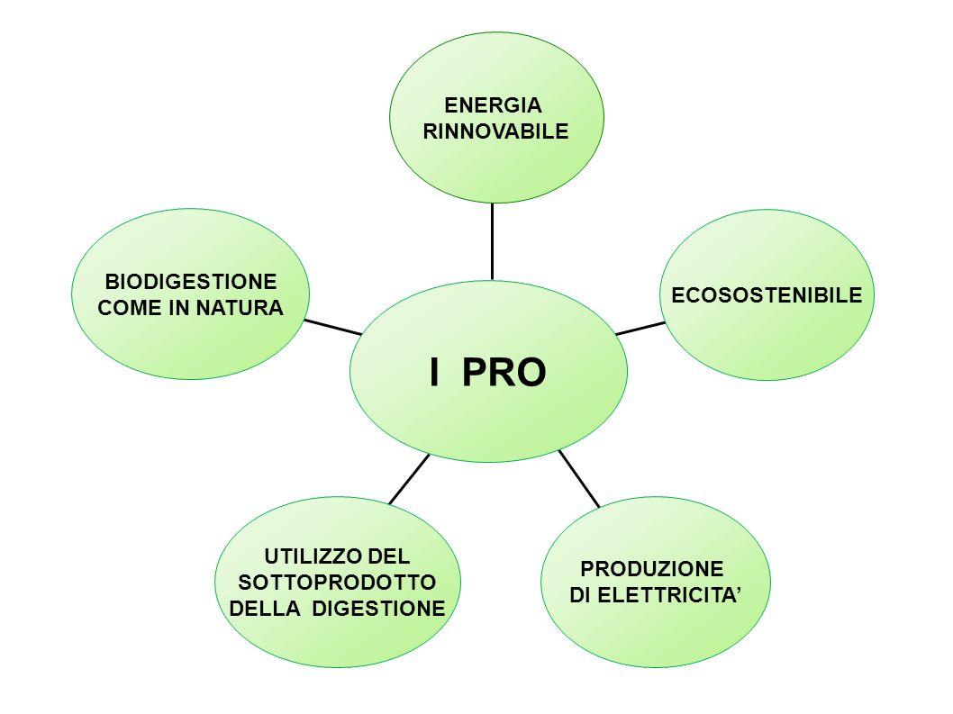 I PRO ENERGIA RINNOVABILE BIODIGESTIONE ECOSOSTENIBILE COME IN NATURA