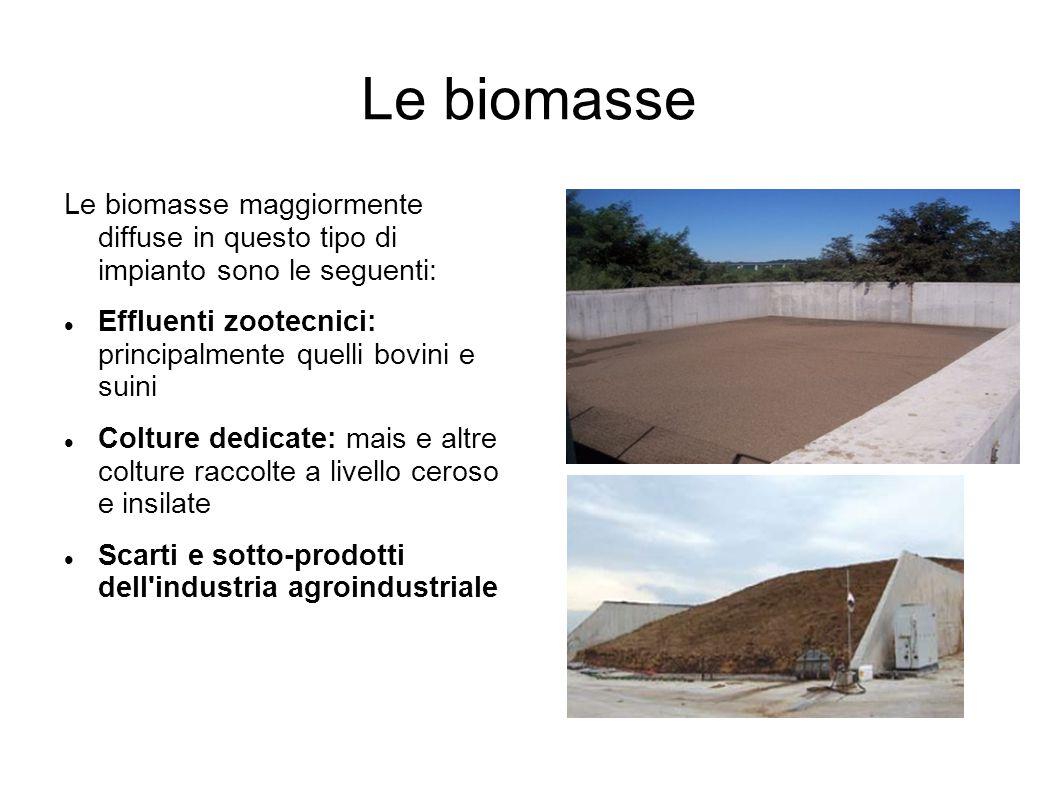 Le biomasse Le biomasse maggiormente diffuse in questo tipo di impianto sono le seguenti:
