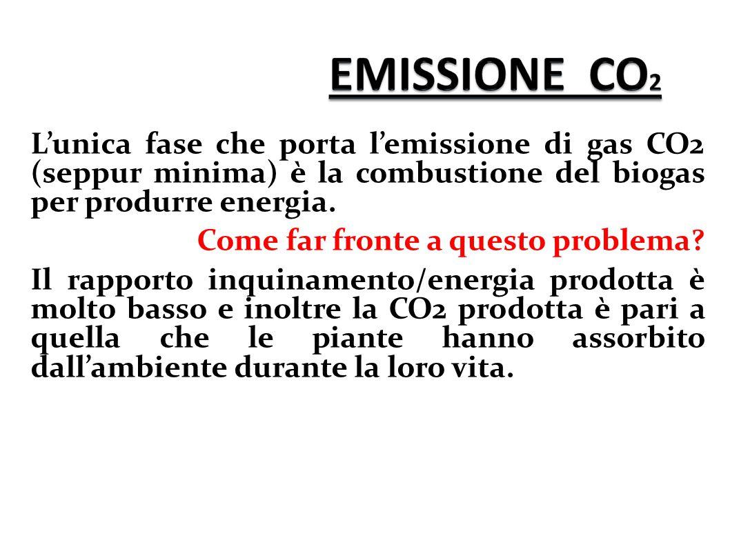 L'unica fase che porta l'emissione di gas CO2 (seppur minima) è la combustione del biogas per produrre energia.