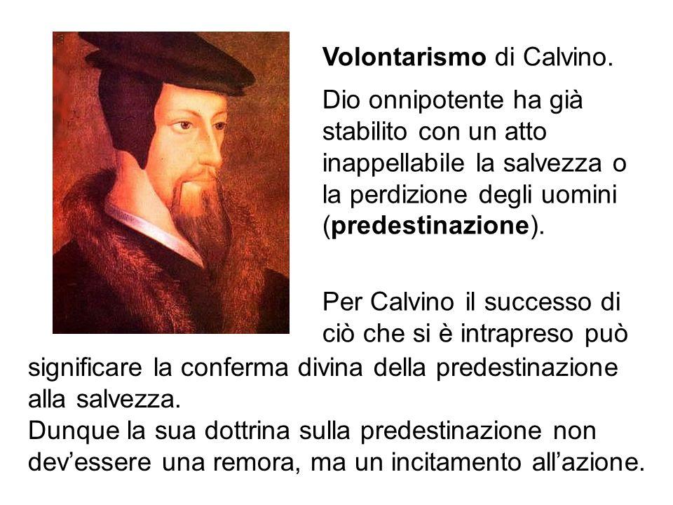 Volontarismo di Calvino.