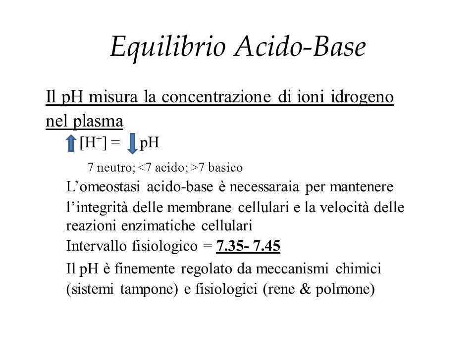 Il pH misura la concentrazione di ioni idrogeno nel plasma