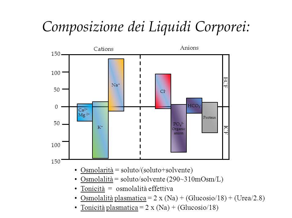 Composizione dei Liquidi Corporei: