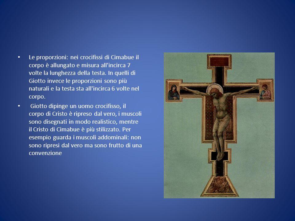 Le proporzioni: nei crocifissi di Cimabue il corpo è allungato e misura all incirca 7 volte la lunghezza della testa. In quelli di Giotto invece le proporzioni sono più naturali e la testa sta all incirca 6 volte nel corpo.