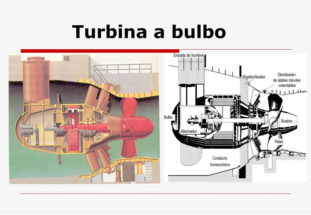 Turbina a bulbo