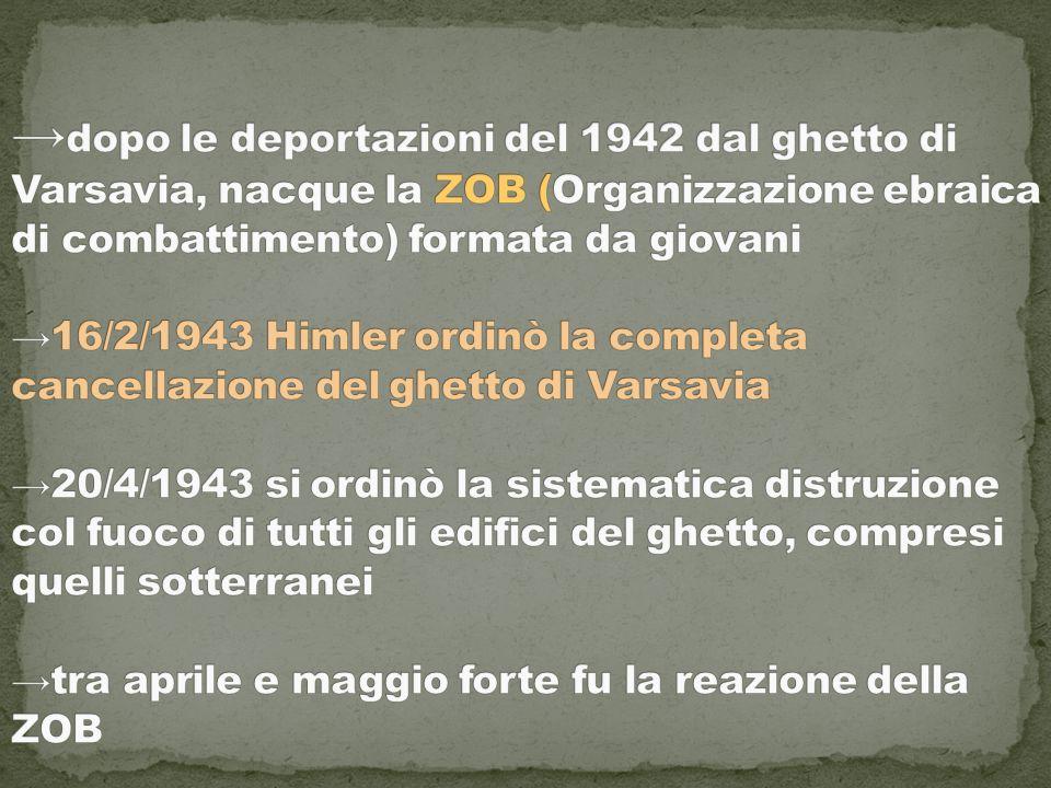 →dopo le deportazioni del 1942 dal ghetto di Varsavia, nacque la ZOB (Organizzazione ebraica di combattimento) formata da giovani →16/2/1943 Himler ordinò la completa cancellazione del ghetto di Varsavia →20/4/1943 si ordinò la sistematica distruzione col fuoco di tutti gli edifici del ghetto, compresi quelli sotterranei →tra aprile e maggio forte fu la reazione della ZOB