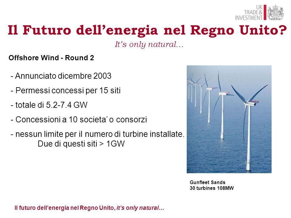 Il Futuro dell'energia nel Regno Unito