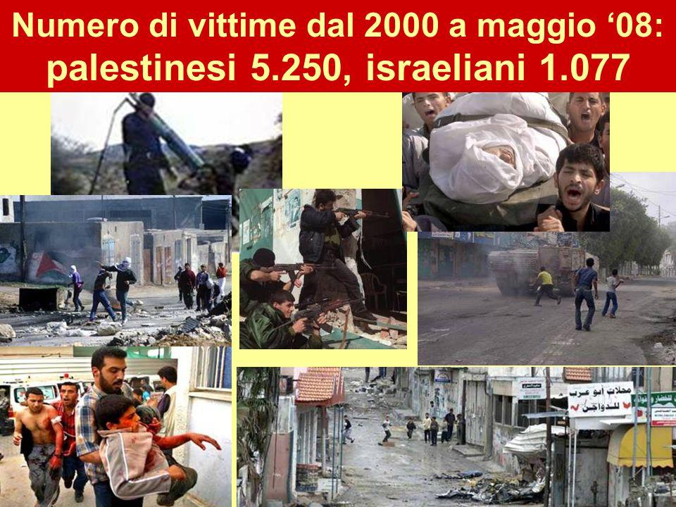 Numero di vittime dal 2000 a maggio '08: palestinesi 5