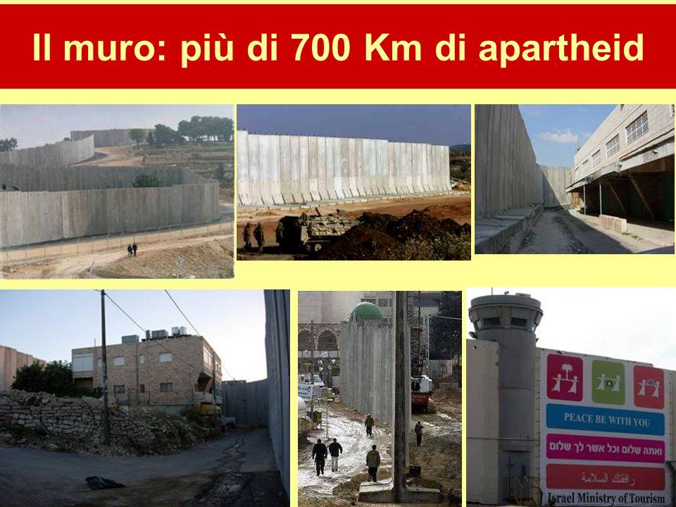 Il muro: più di 700 Km di apartheid
