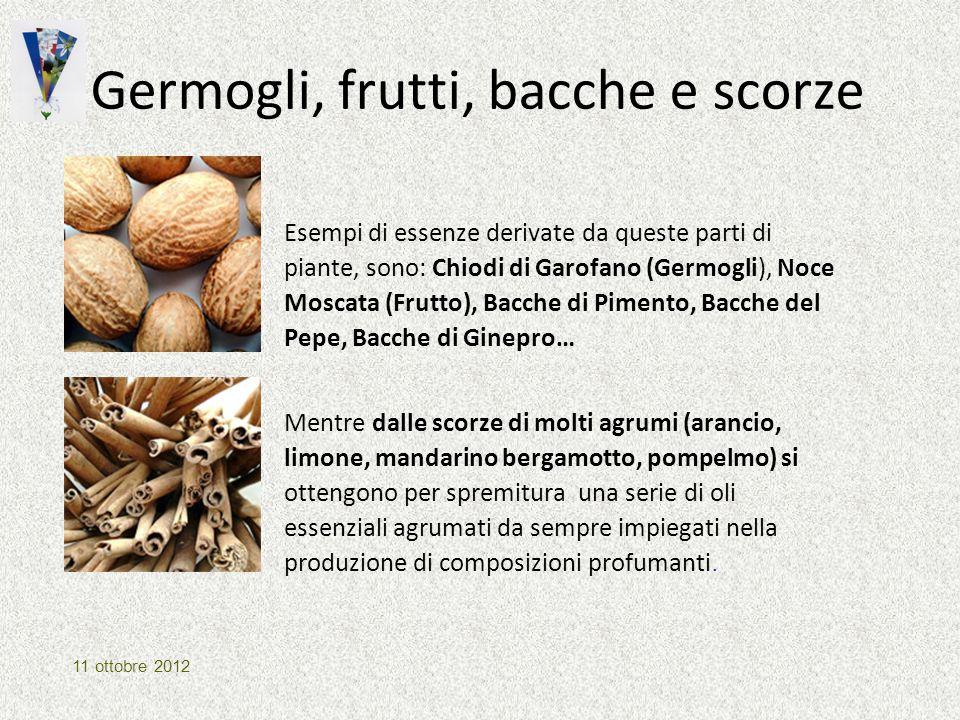 Germogli, frutti, bacche e scorze