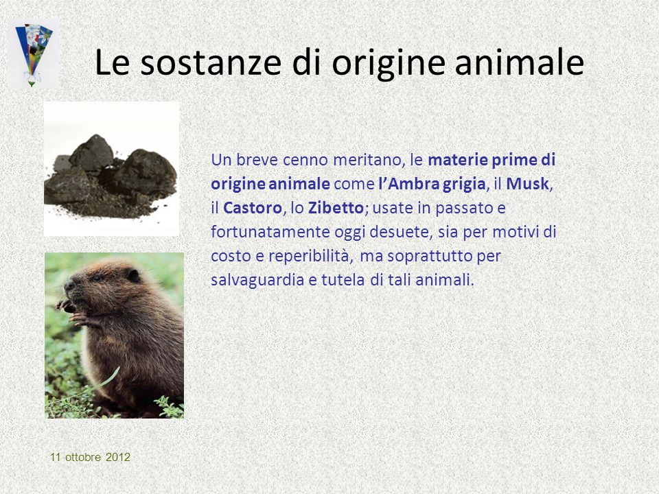 Le sostanze di origine animale