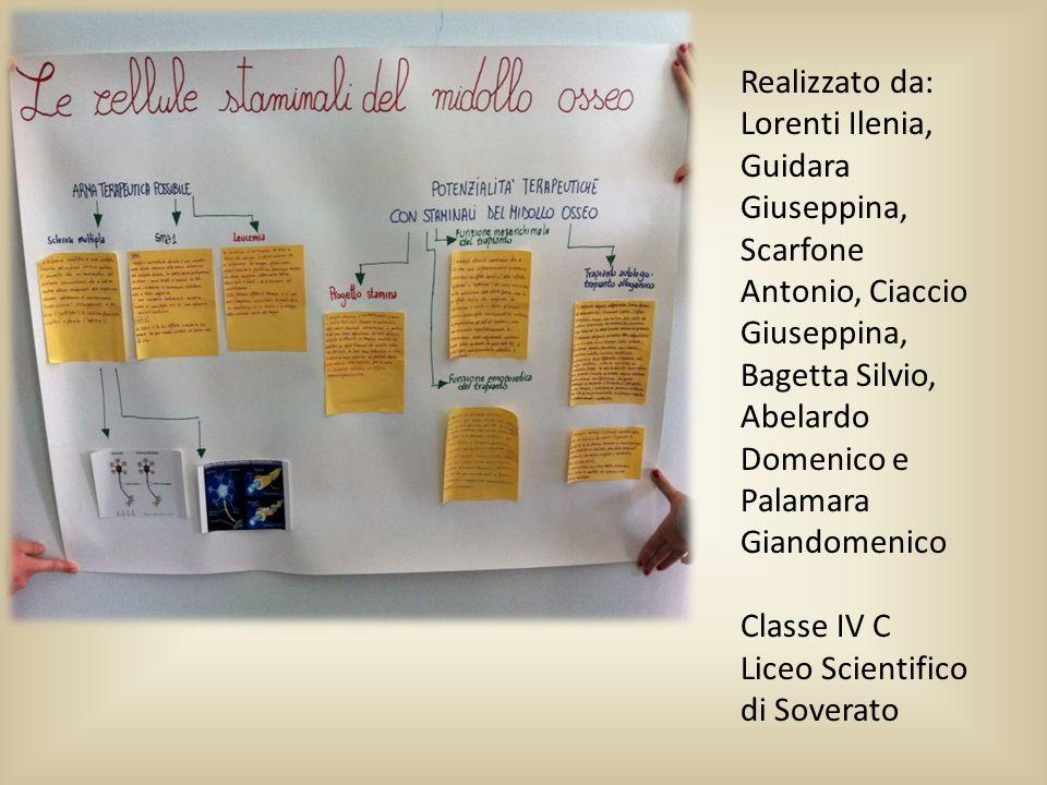 Realizzato da: Lorenti Ilenia, Guidara Giuseppina, Scarfone Antonio, Ciaccio Giuseppina, Bagetta Silvio, Abelardo Domenico e Palamara Giandomenico.