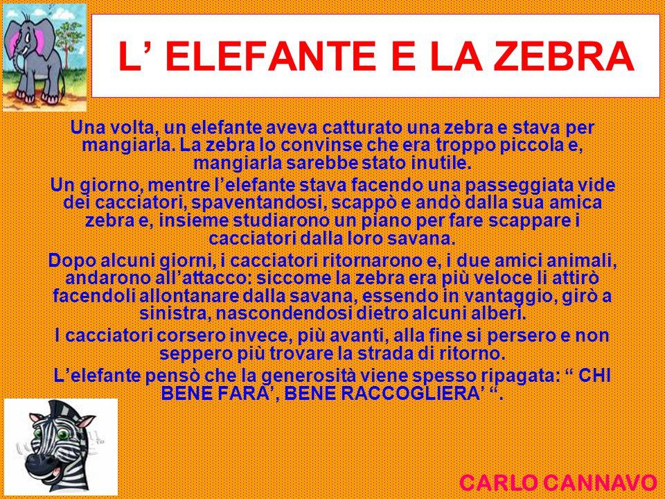 L' ELEFANTE E LA ZEBRA CARLO CANNAVO