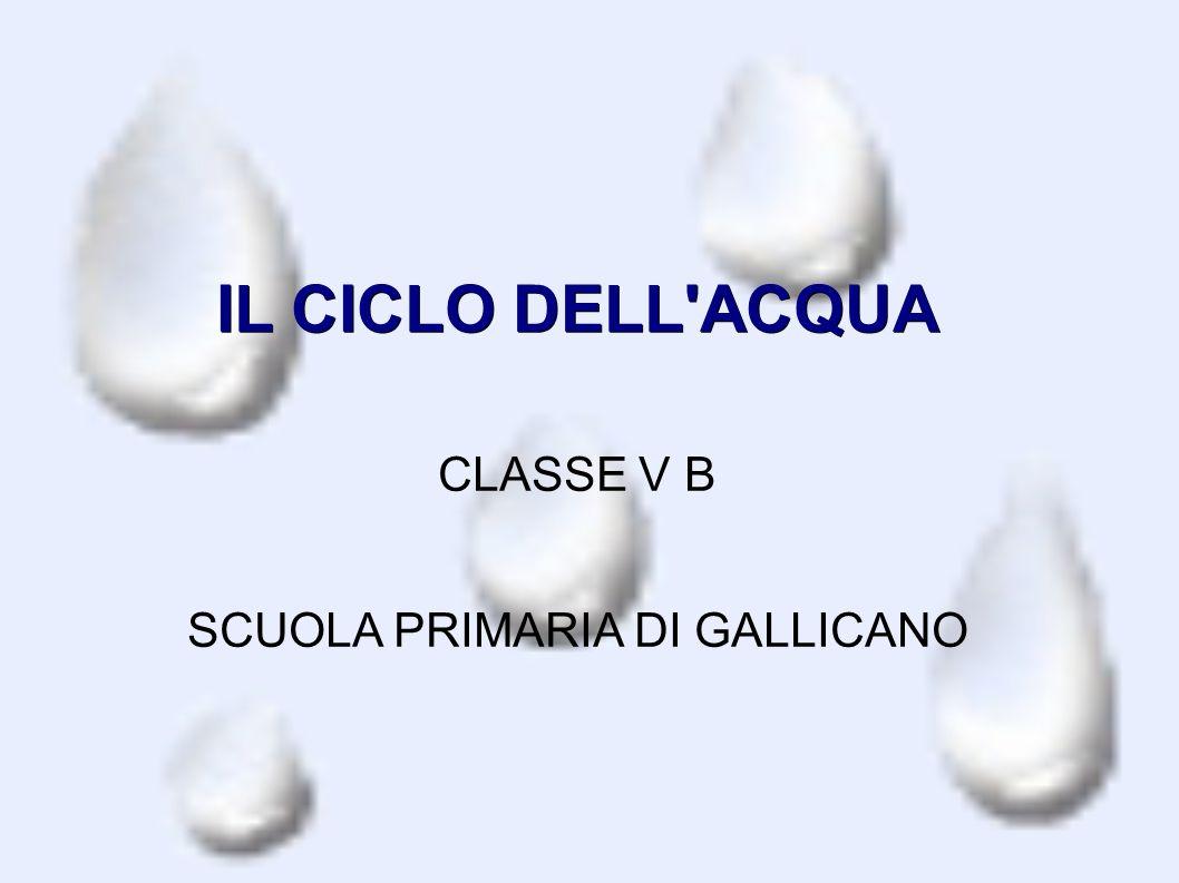 IL CICLO DELL ACQUA CLASSE V B SCUOLA PRIMARIA DI GALLICANO