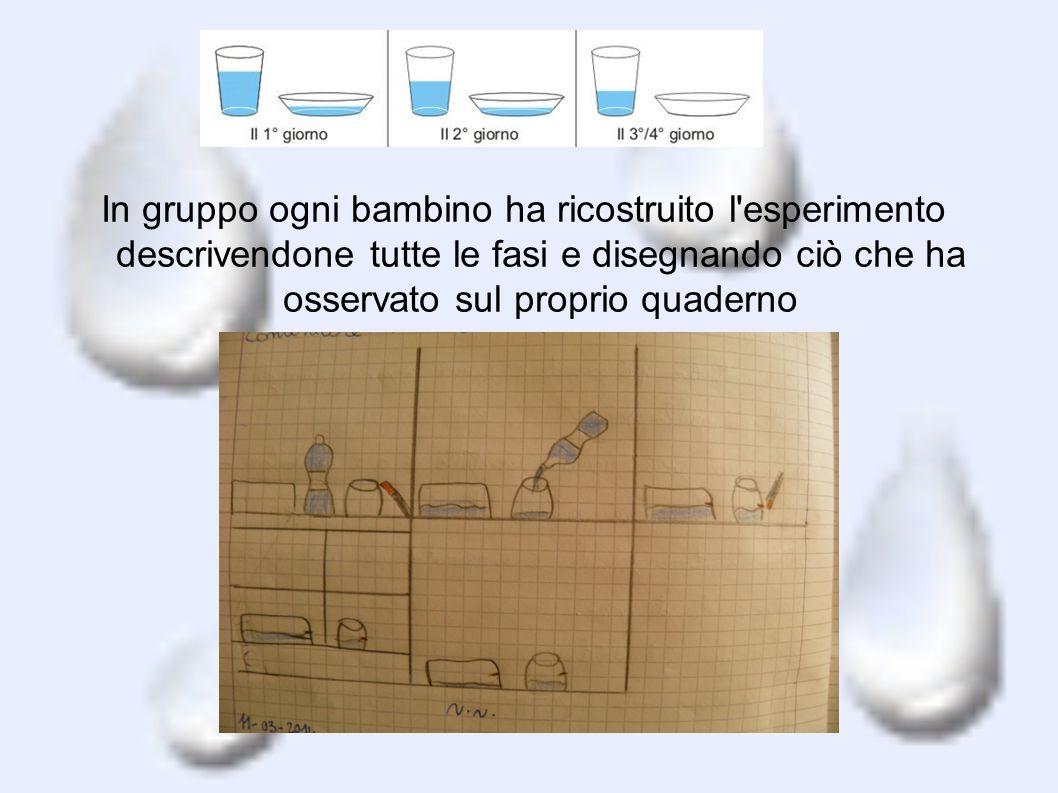 In gruppo ogni bambino ha ricostruito l esperimento descrivendone tutte le fasi e disegnando ciò che ha osservato sul proprio quaderno