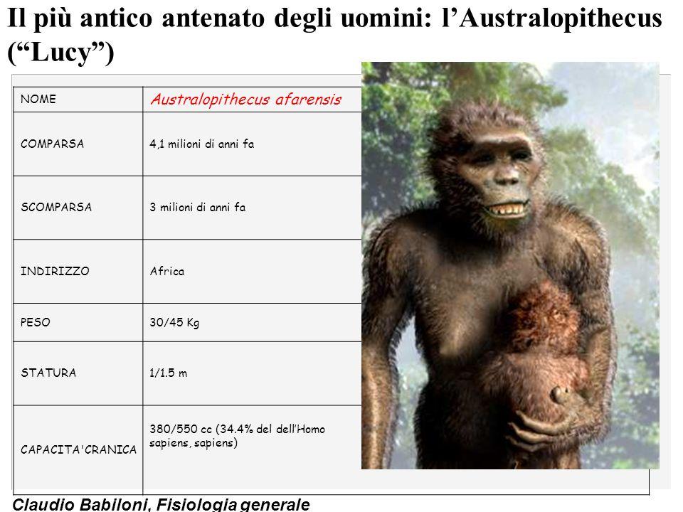 Il più antico antenato degli uomini: l'Australopithecus ( Lucy )