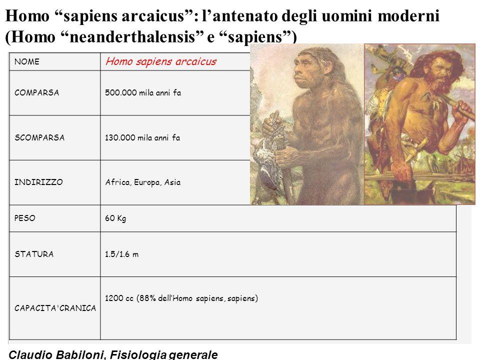 Homo sapiens arcaicus : l'antenato degli uomini moderni (Homo neanderthalensis e sapiens )