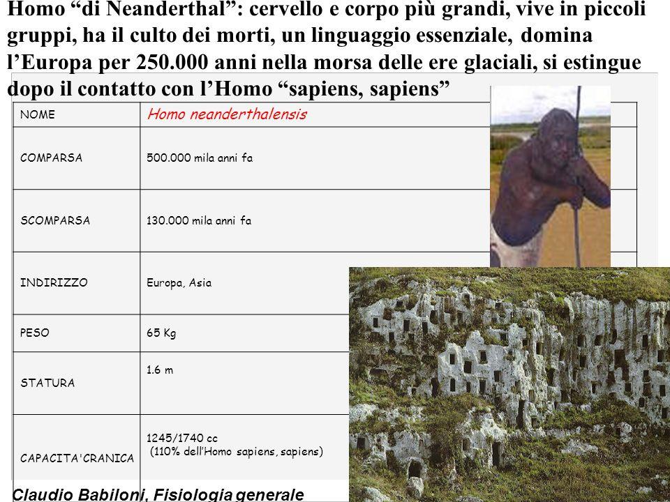 Homo di Neanderthal : cervello e corpo più grandi, vive in piccoli gruppi, ha il culto dei morti, un linguaggio essenziale, domina l'Europa per 250.000 anni nella morsa delle ere glaciali, si estingue dopo il contatto con l'Homo sapiens, sapiens