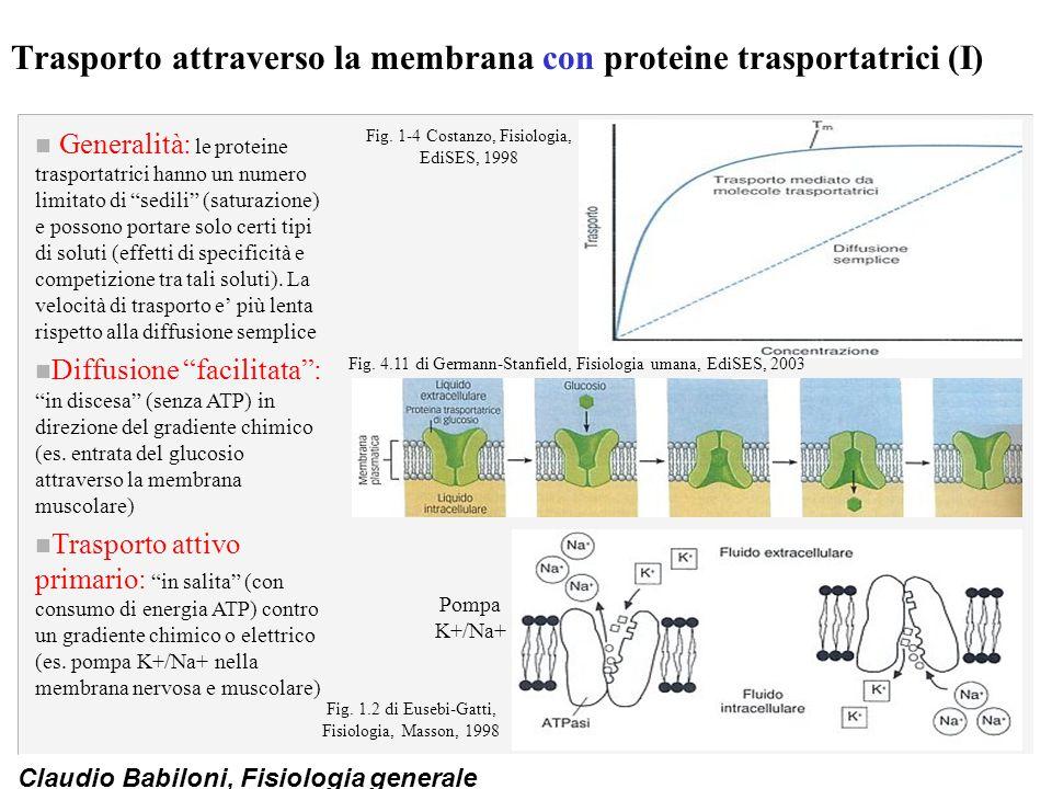 Trasporto attraverso la membrana con proteine trasportatrici (I)