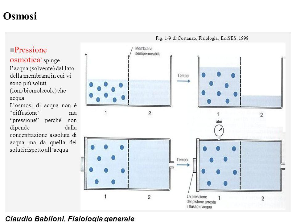 Fig. 1-9 di Costanzo, Fisiologia, EdiSES, 1998