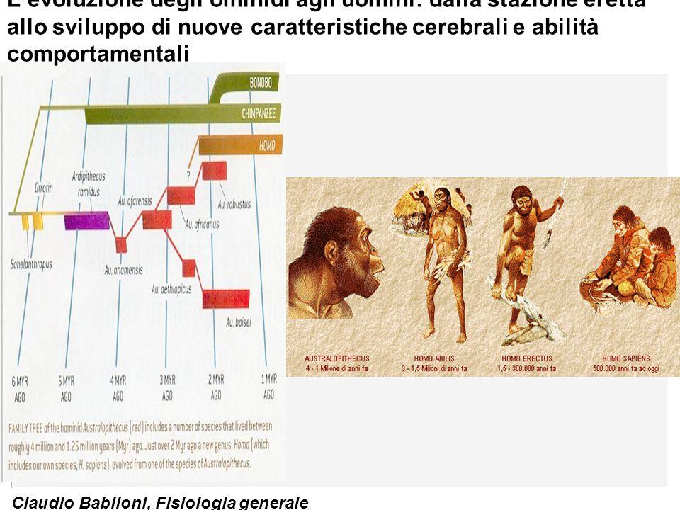 L'evoluzione degli ominidi agli uomini: dalla stazione eretta allo sviluppo di nuove caratteristiche cerebrali e abilità comportamentali