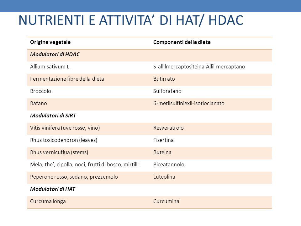 NUTRIENTI E ATTIVITA' DI HAT/ HDAC