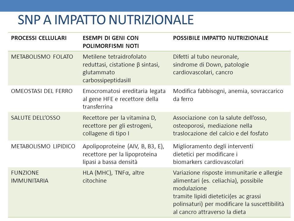 SNP A IMPATTO NUTRIZIONALE