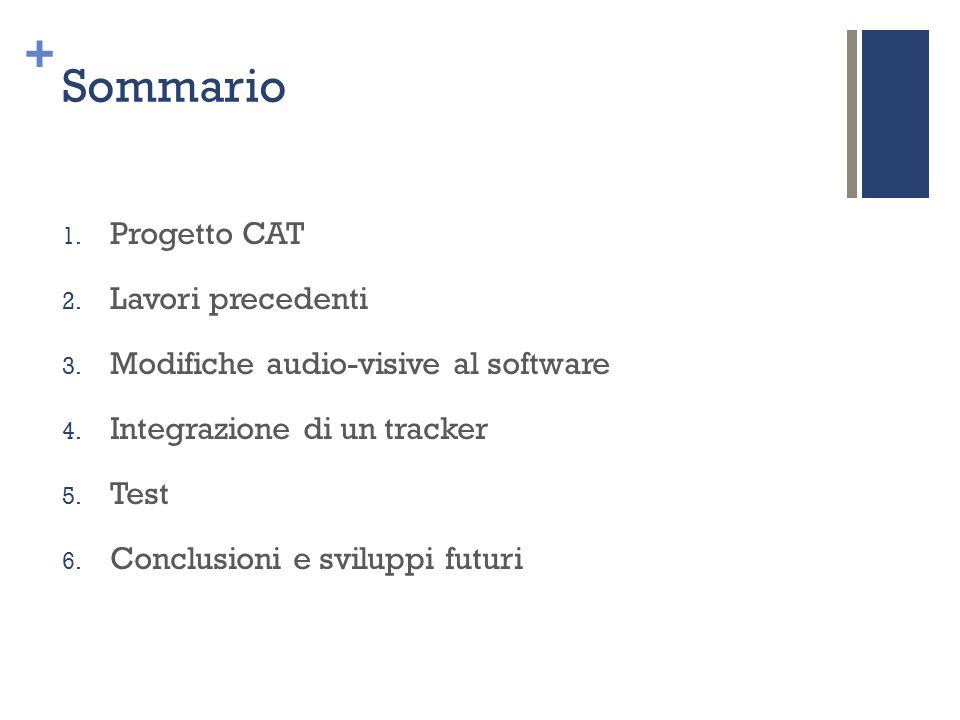 Sommario Progetto CAT Lavori precedenti